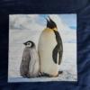 Bleu marin - Pingouins