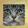 Vert clair - Visage de chat